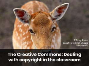 The Creative Commons: Dealing with Copyright in the Classroom